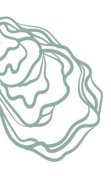 illustration-huitre