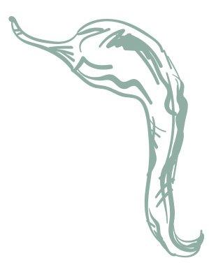 illustration-piment