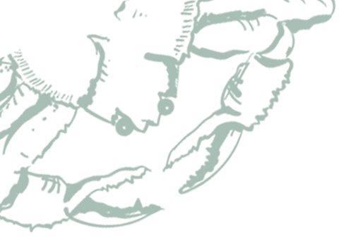 illustration-crabe